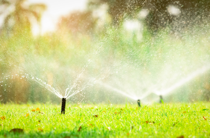 An irrigation system's sprinklers watering a lawn.