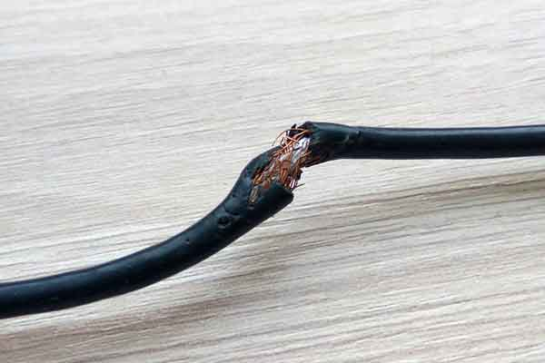 a chewed-through electrical cord